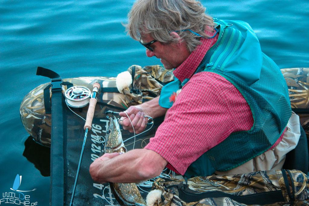 Fliegenfischen auf Hecht mit Bellyboat
